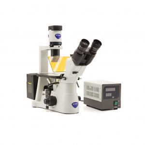 Inverted trinocular HBO fluorescence microscope, 400x, IOS F, B & G filter set, multi-plug / EU plug